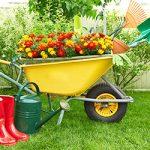 Green Escrow   Gardening tools